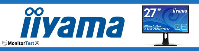 iiyama Monitor Ratgeber